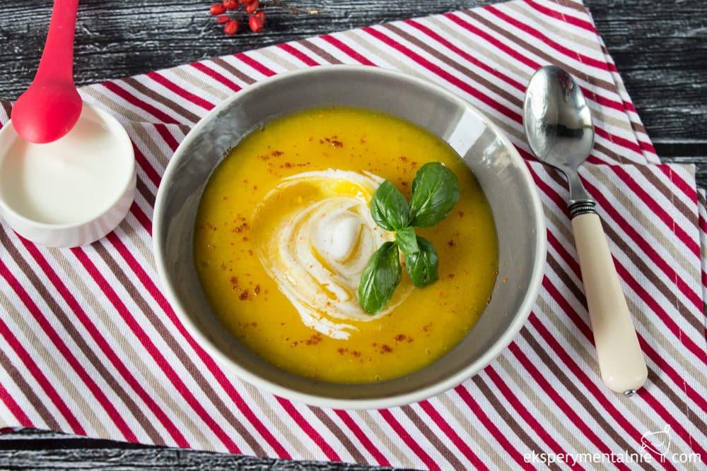 wytrawny zupa krem z dyni