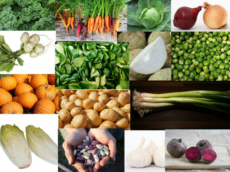 sezonowe warzywa Zima